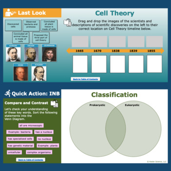 Structure of Life Interactive Notebook Pages