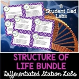 Structure of Life Labs Bundle - Differentiated Science Station Labs