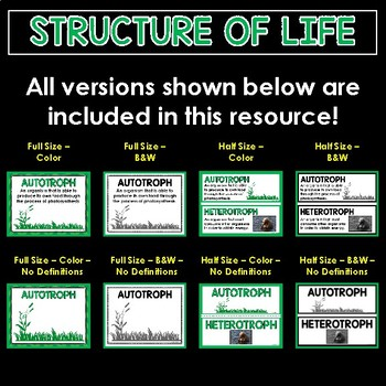 Structure of Life Word Wall