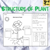 Structure of a Plant and Functions *Distance Learning*