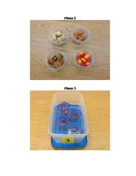 Structured Teaching Job Box 3