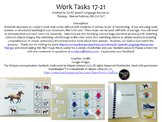 Structured Work Tasks 17-21