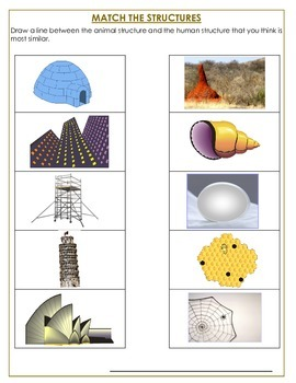 Structures--Objects That Hold Themselves Together