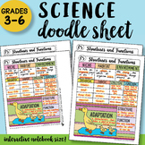 Structures and Functions - Doodle Sheet - So Easy to use! PPT Included