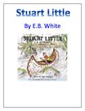Stuart Little Comprehension