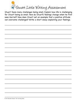 Stuart Little Assessment Packet