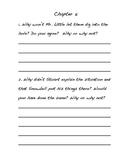 Stuart Little Comprehension Activities