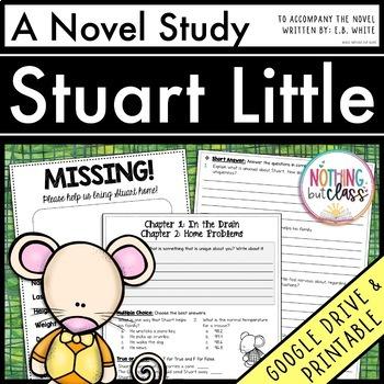 Stuart Little Novel Study Unit: comprehension, vocabulary, activities, tests