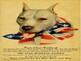 Stubby the Wonder Dog and Animals in World War One