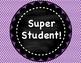 Student Behavior Clip Chart