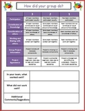 Student Collaboration Group Project Rubric