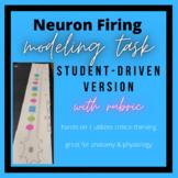 Student-Driven Neuron Firing Modeling: Hands-On Activity