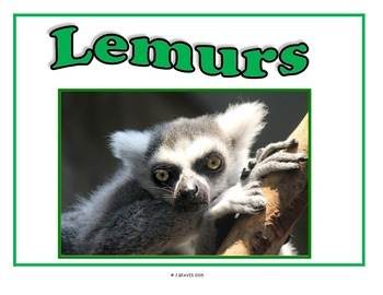 Student Group Posters - Unusual Primates
