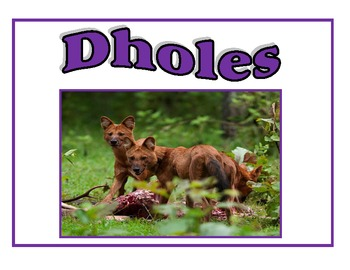 Student Groups Posters - Dogs in the Wild