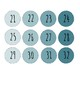 Student Numbers (1-32)