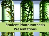 Student Photosynthesis Presentations