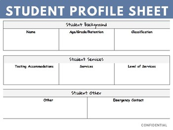 Student Profile Sheets (Easy Sheet for IEPs and 504s)
