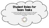 Student Roles for Team Tasks
