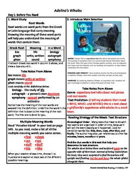 Student Sheets/Close Reading Unit 3 Wk 2 Main Selection Adelina's Whales