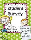 Student Survey ~ FREEBIE