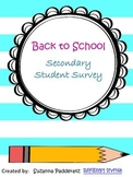 Student Survey - Secondary