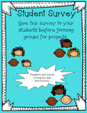 Student Survey for Group Work