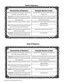 Student Vertebrate Cards