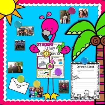 Student of the Week - Flamingo Theme
