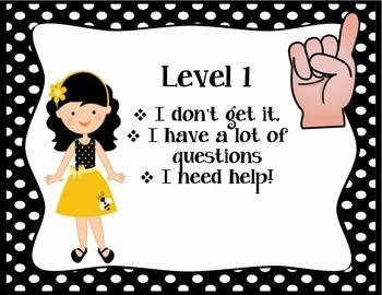 Students level of understanding (Bee-themed)