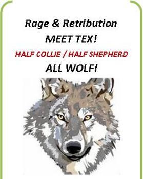 Study Companion for Rage and Retribution