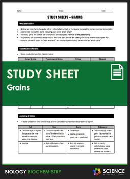 Study Sheet - Grains
