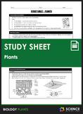 Study Sheet - Plants