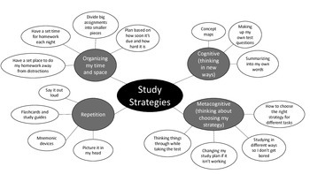 Study Strategies Concept Map