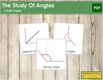Study of Angles: 3-Part Cards