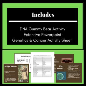Study of Genetics and Heredity: Genes, Traits, Meiosis & Mitosis