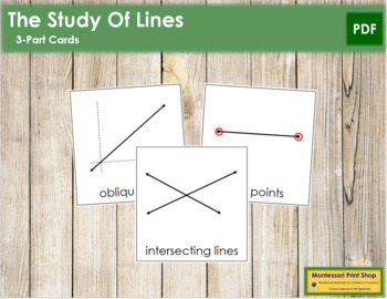 Study of Lines: 3-Part Cards