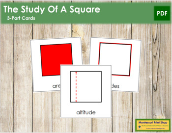 Study of a Square: 3-Part Cards