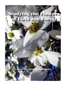 Studying Flowers - from field and from forest