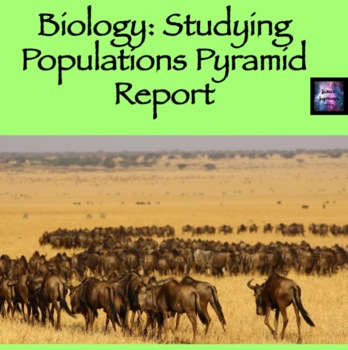Studying Populations Pyramid Report
