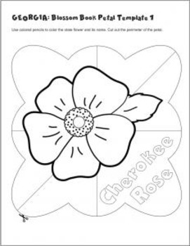 Studying State Flowers—GEORGIA: A Blossom Book of the State Flower