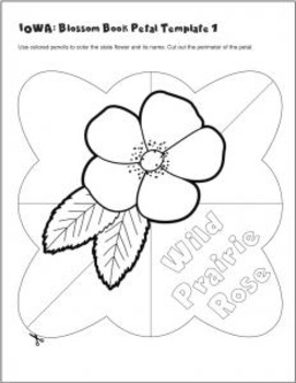 Studying State Flowers—IOWA: A Blossom Book of the State Flower