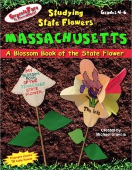 Studying State Flowers—MASSACHUSETTS: A Blossom Book of th
