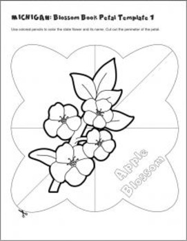 Studying State Flowers—MICHIGAN: A Blossom Book of the State Flower