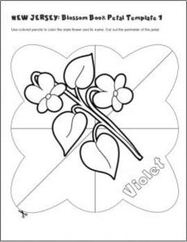 Studying State Flowers—NEW JERSEY: A Blossom Book of the State Flower