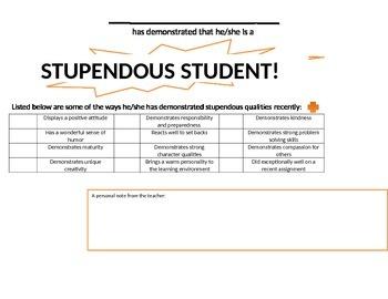 Stupendous Student Electronic Award