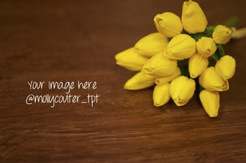 FREEBIE! Stock Photo: Yellow Tulips-Personal & Commercial Use