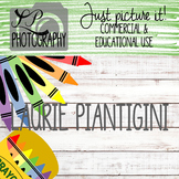 Styled Images for Teacherpreneurs: School Set of 16 for Co