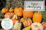 Styled Stock Photo: Fall set 25 (Comm Use OK)