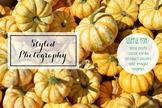 Styled Stock Photo: Fall set 4 (Comm Use OK)
