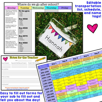 Substitute Binder + Sub Plans ... Totally Editable, Amazingly Detailed!